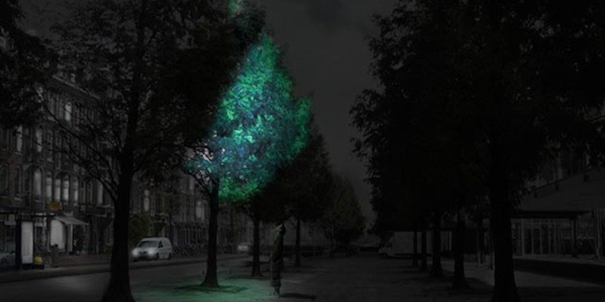 In The Not So Distant Future Glow In The Dark Trees Could
