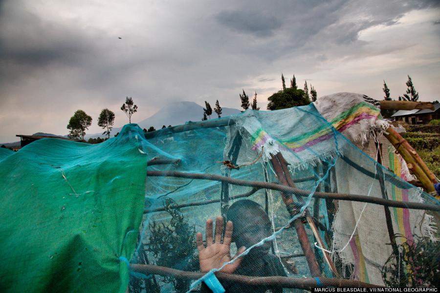 refugee goma
