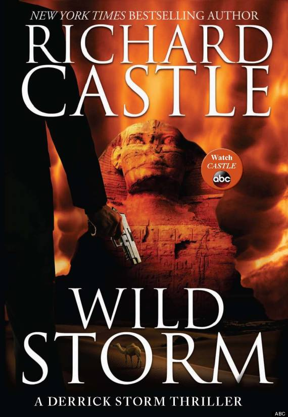 wild storm cover