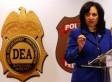 DEA Seizes Kentucky's Hemp Seeds Despite Congressional Legalization (UPDATE)