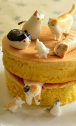 Calling All Crazy Cat Ladies, This Cake's For You