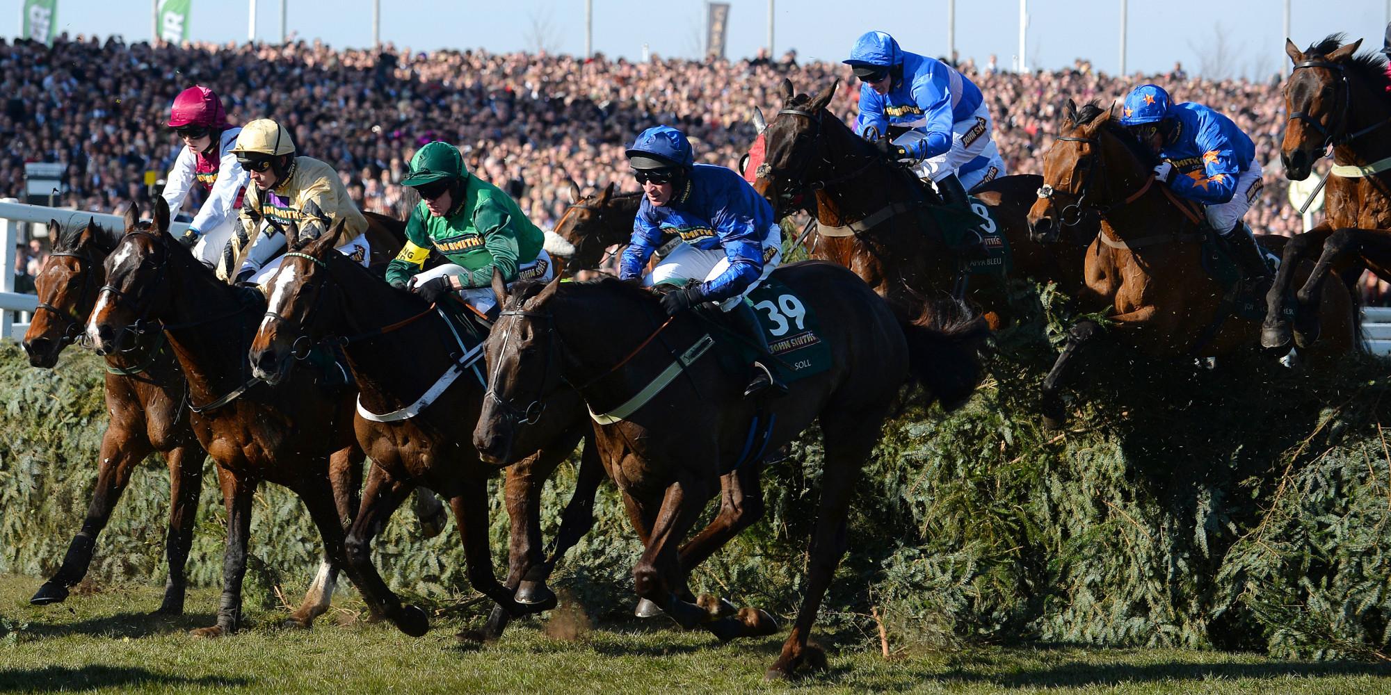 racing post grand national