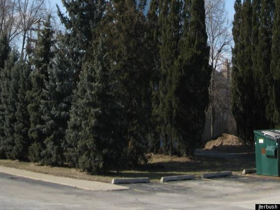 Porn Search Capital Of The U.S.: Elmhurst, Illinois. Elmhurst