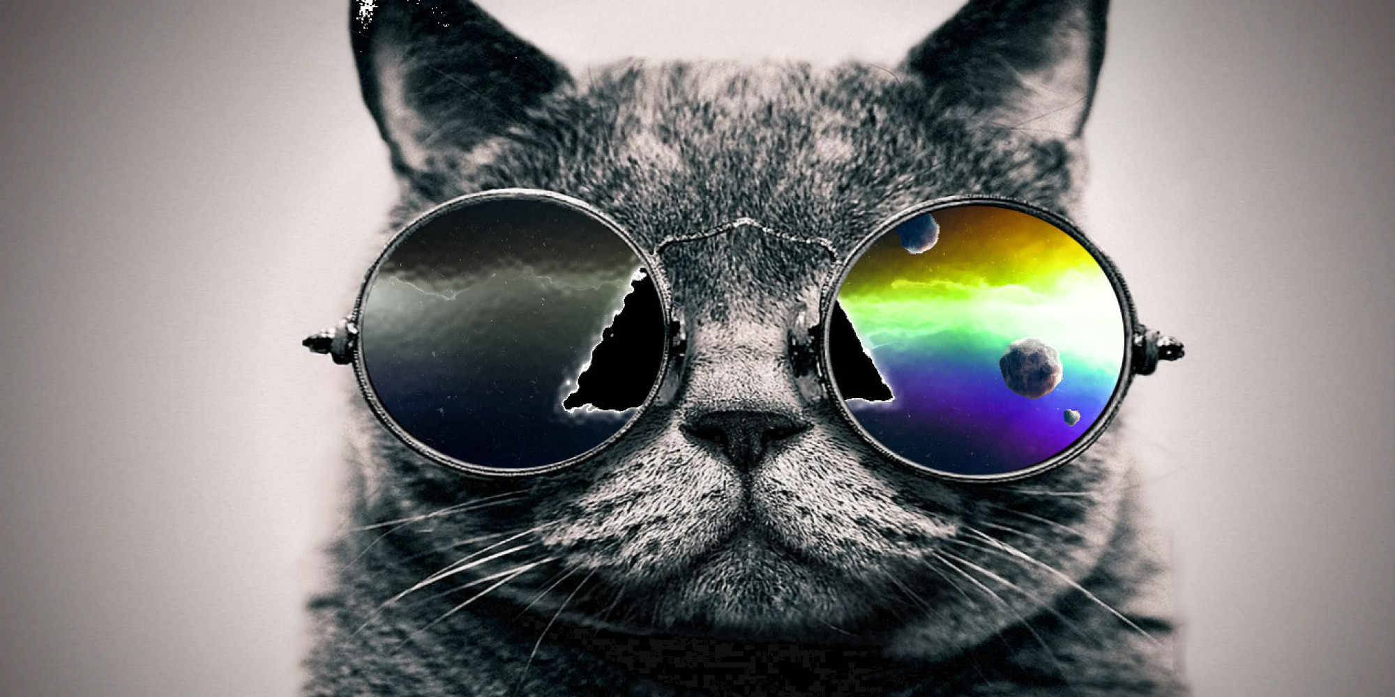cool cat desktop cats resolution digital google artwork amazing widescreen mac 1000 wallpapers 2000 backgrounds cliparts awesome kitty ever kittens