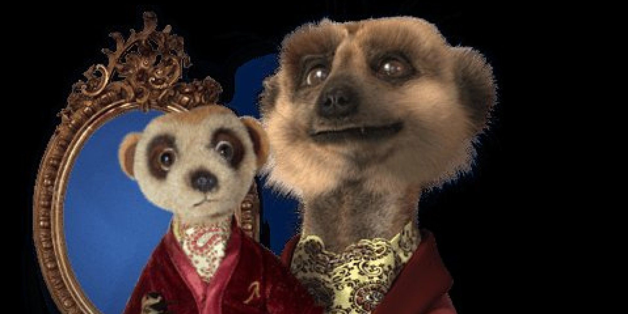 Compare The Meerkat Toy Is Not Proof Of Car Insurance