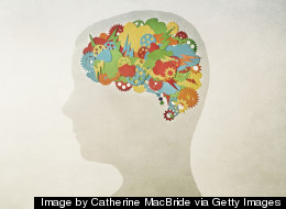 9 Things You Must Not Do to Your Brain