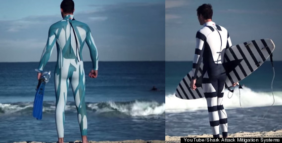sea snake wetsuit