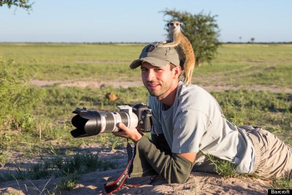 photographer meerkat