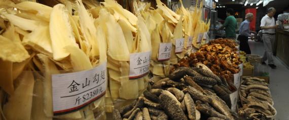 SHARK FIN HONG KONG