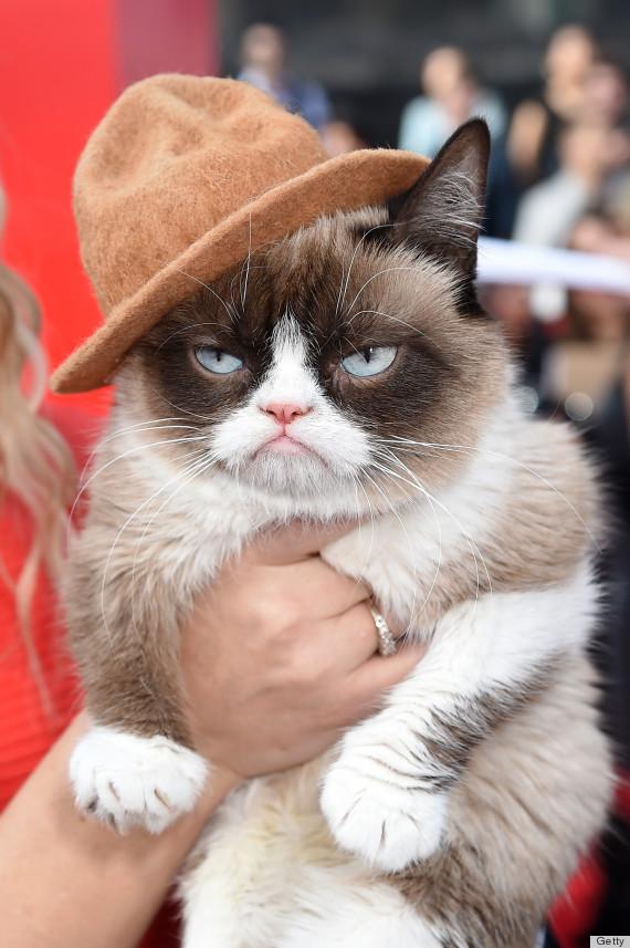 grumpy pharrell
