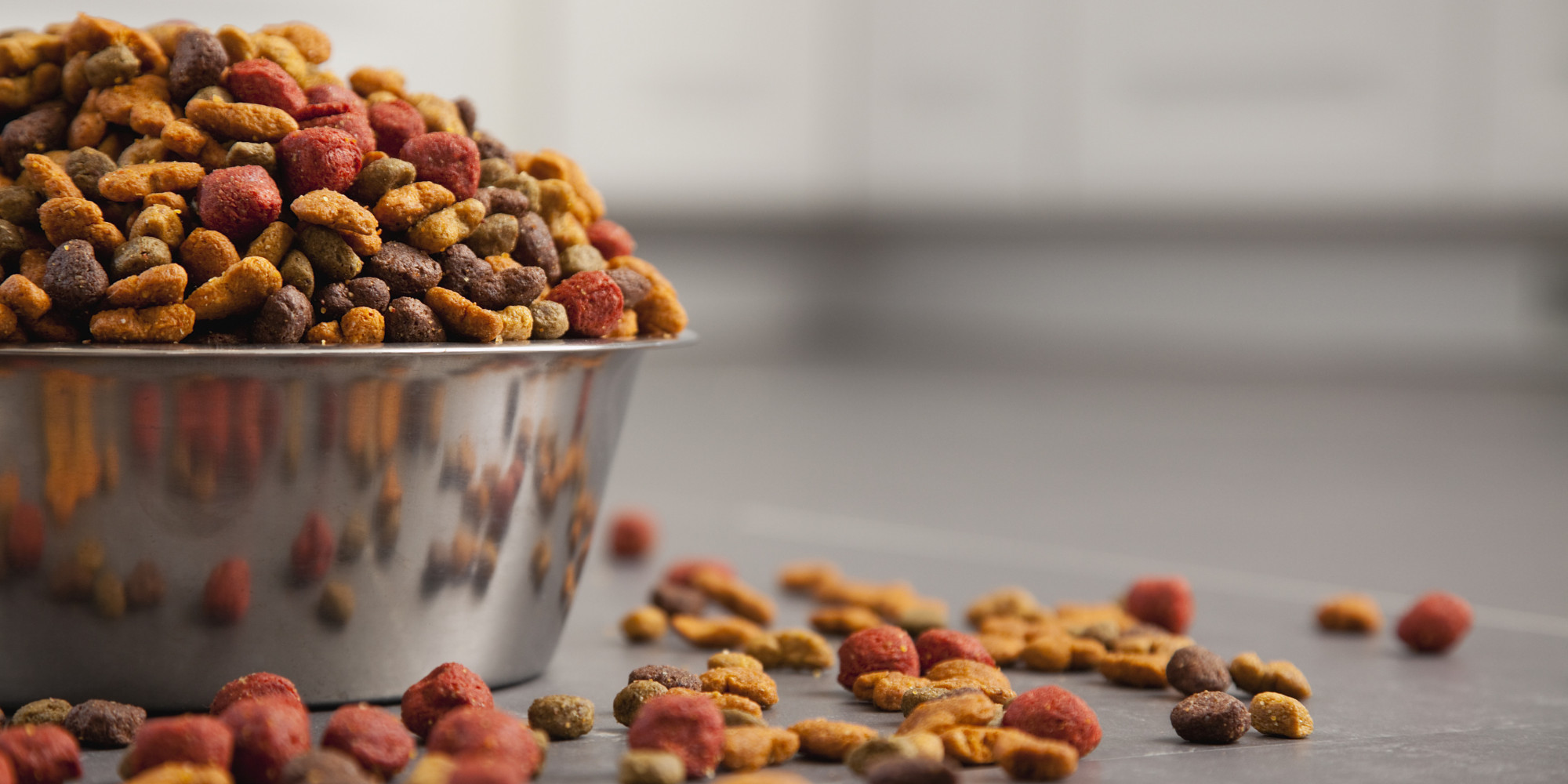 Changes Ahead For The Pet Food Industry