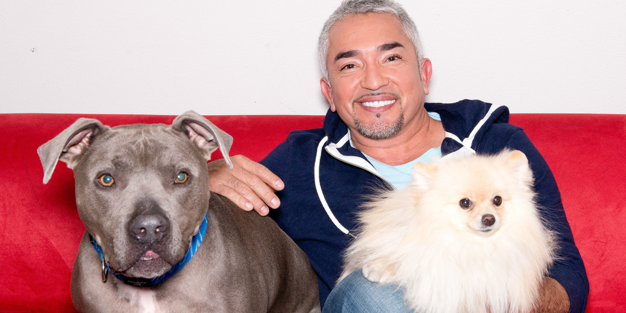 Cesar millan end the genocide against pit bulls