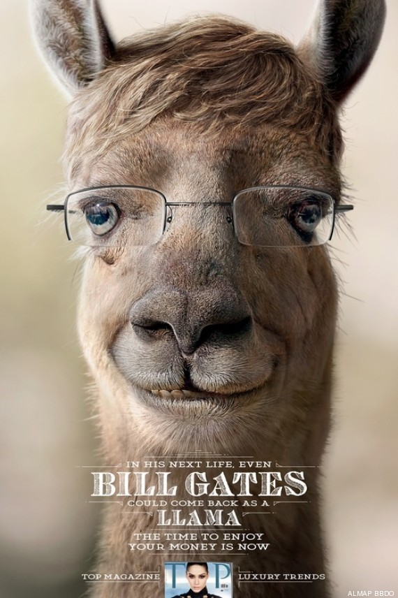 bill gates lama