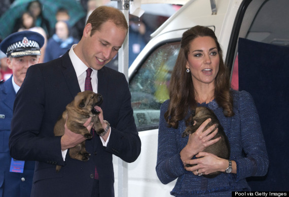 william and kate and dog