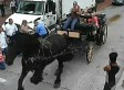 Runaway Horse Takes Tourists On Wild Ride Through Downtown Savannah (VIDEO)