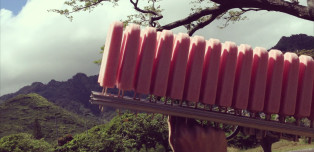 Hawaiian Popsicles Unlike Anything You've Ever Had