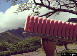 These Hawaiian Popsicles Are Unlike Anything You've Ever Had