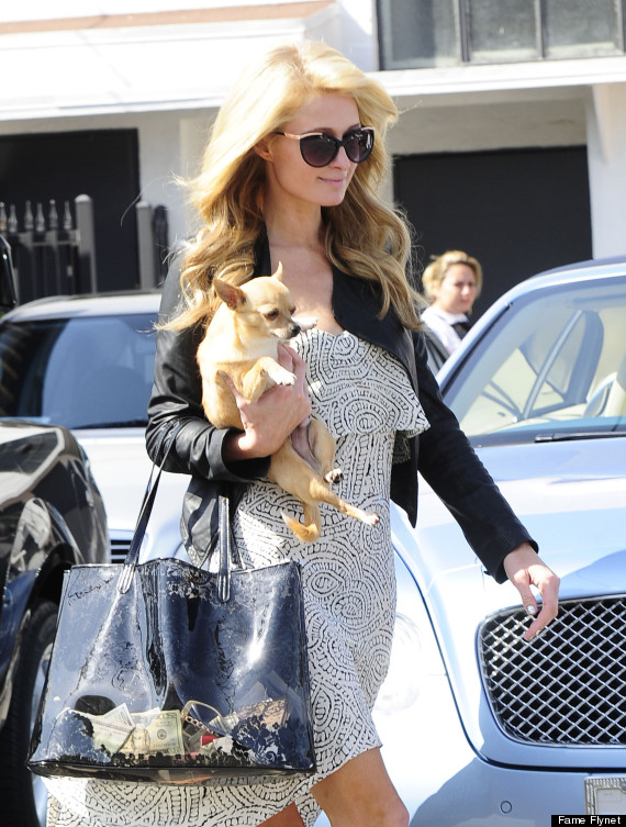 Paris Hilton S See Through Purse Is Filled With Cash
