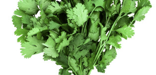 Why Cilantro Tastes Like Soap