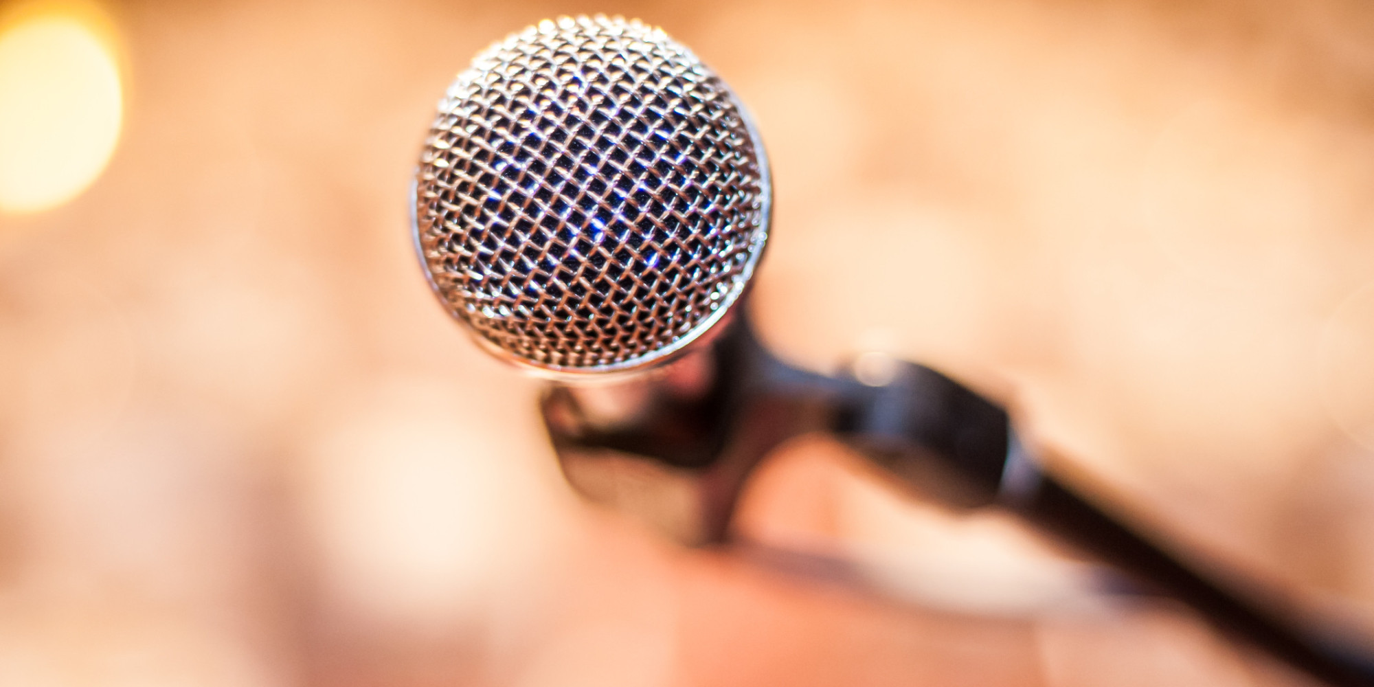 Public Speaking Microphone