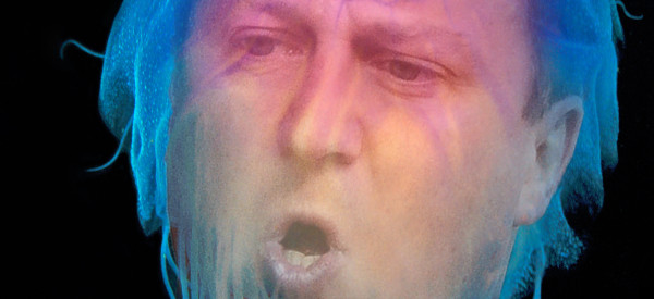 David Cameron Stung By Jellyfish, Twitter Reacts Gleefully