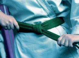 Karate Kid Article