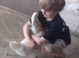 This Little Boy Hugging His Chicken Gives Us So Many Feels