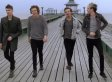 1D Meld Together Into One, Walking, Singing Dude In New Video