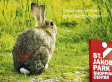 Animal Rights Activists Object To Bunny Underwear Advert