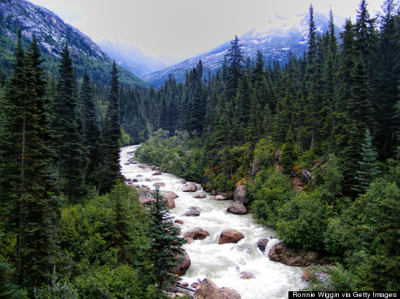 Kid Things To Do In Anchorage Alaska