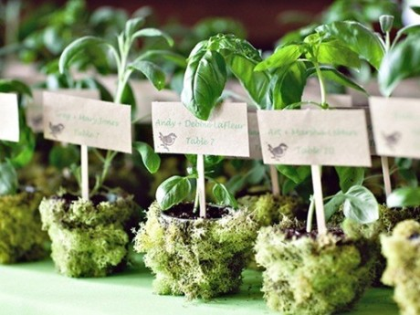 5 Ways To Throw A Green Wedding
