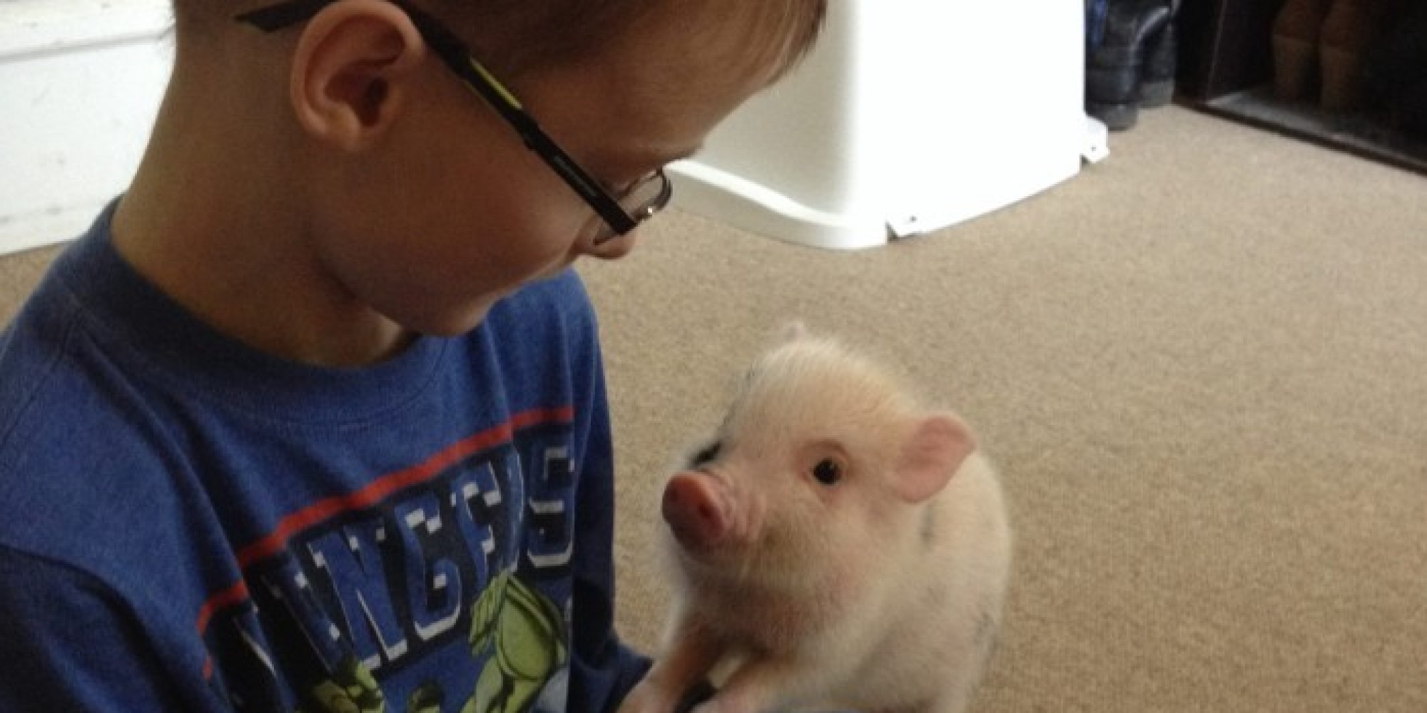 What It's Like To Have A Miniature Pig For A Pet