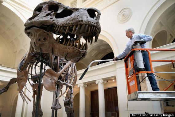field museum dinosaur