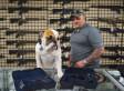 Dealer Backs Down On Plan To Sell Smart Gun After Pro-Gun Activists Threaten To Kill Him