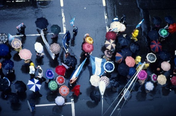 umbrella new york