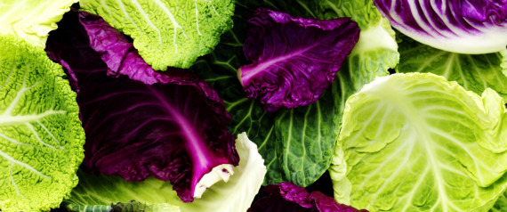 GREEN RED CABBAGE