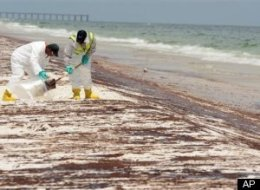 Gulf Oil Spill Liability