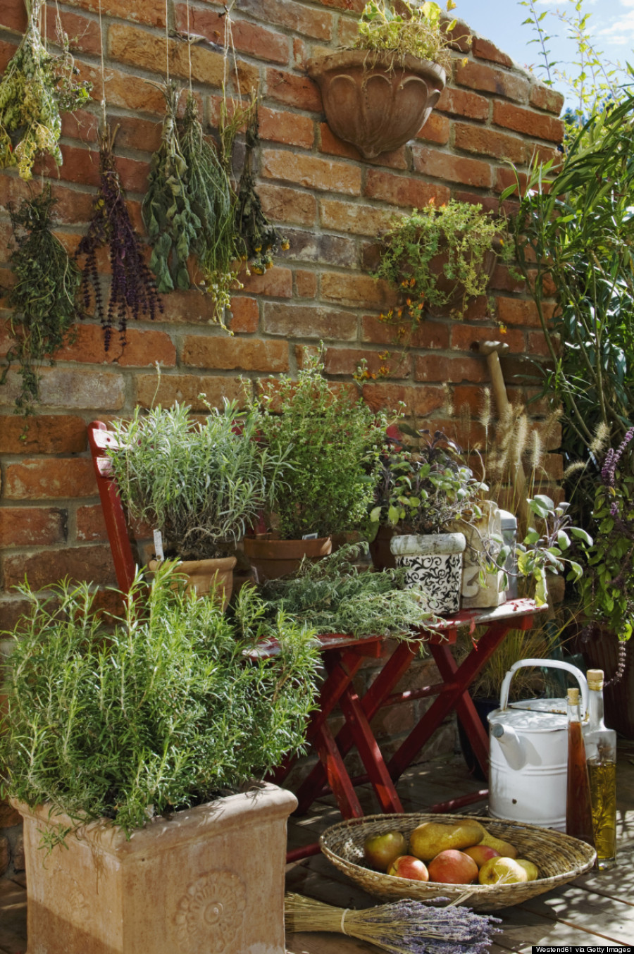 8 Ways To Garden When You Don\'t Even Have A Backyard | HuffPost