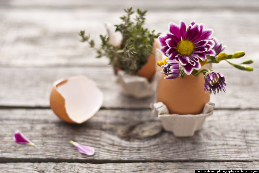egg carton flower