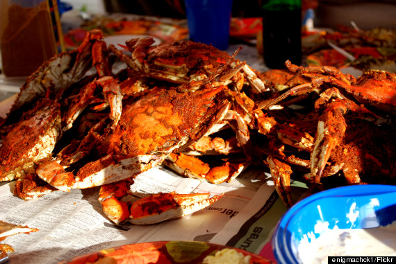 crab feast baltimore