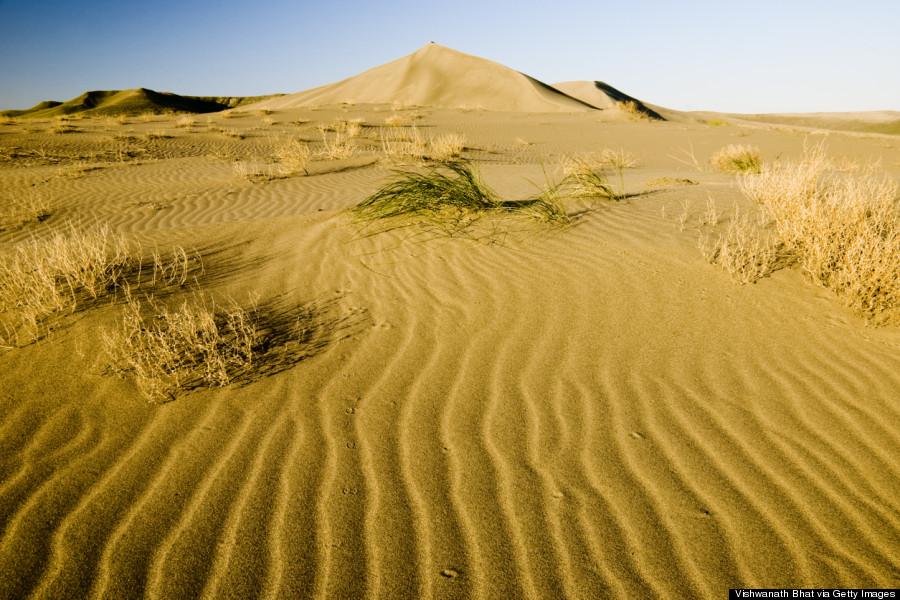 bruneau dunes