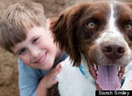 A Family Dog's Letter To His Boy