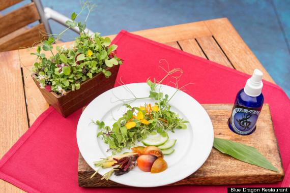 full living salad