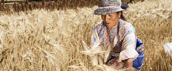 WOMEN FARMING PERU