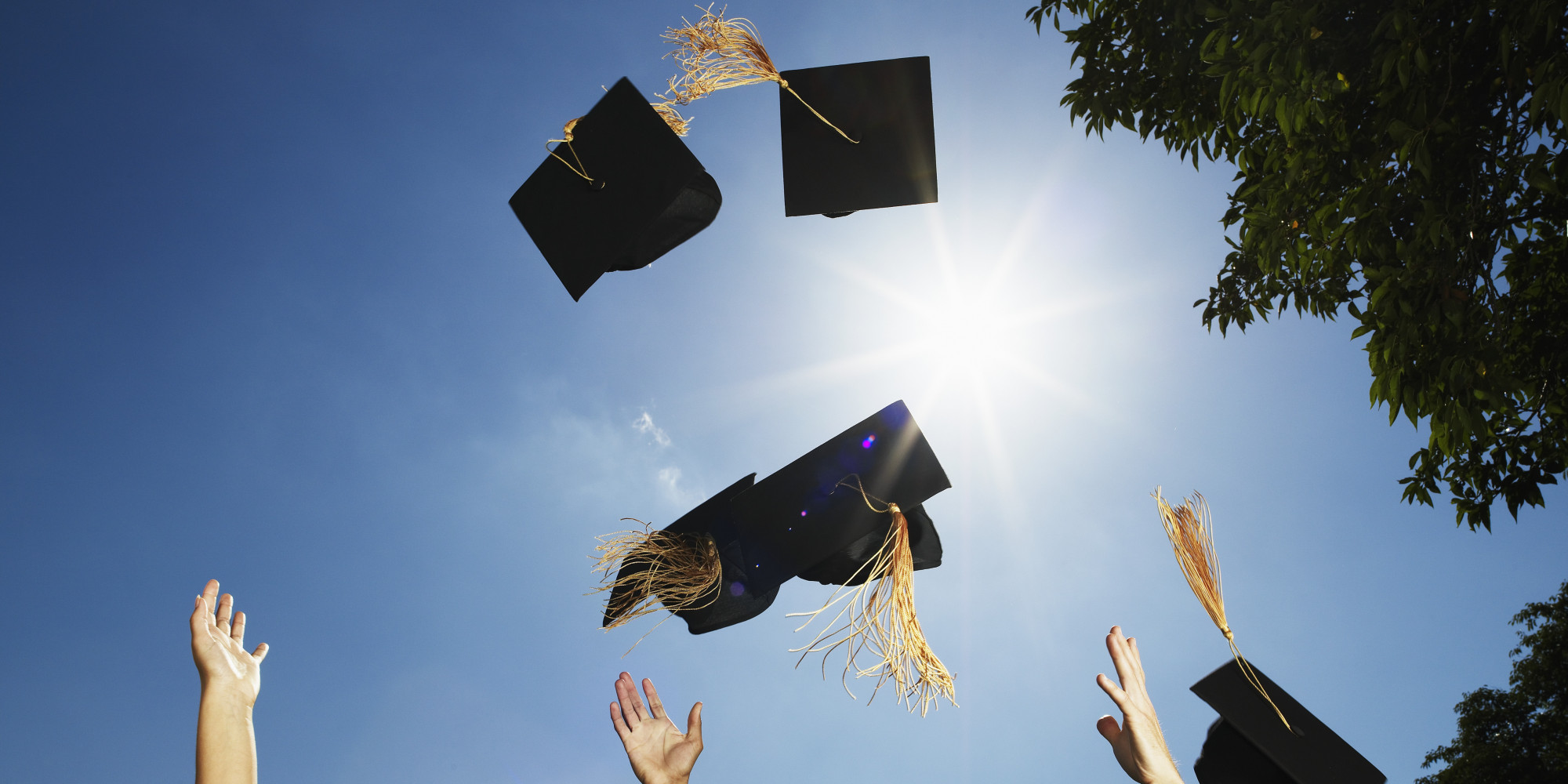 High School Grades Better Predictors of College Graduation