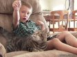 Little Boy Saved From Vicious Dog Attack Hails His Cat As A 'Hero'