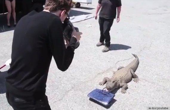 gator bag