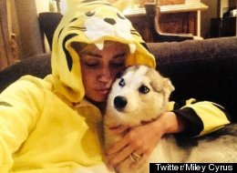 Emotional Miley Opens Up About Dog's Death