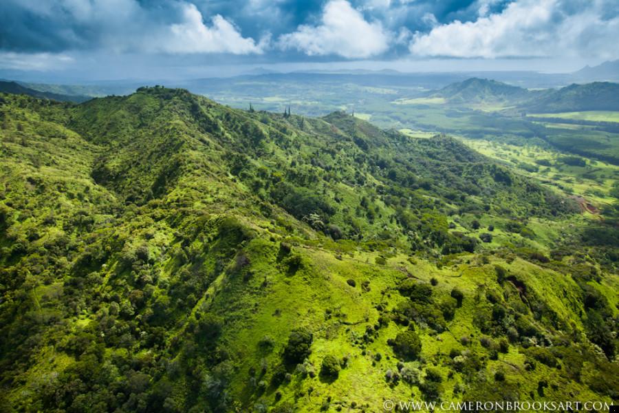 green hill - The Garden Island