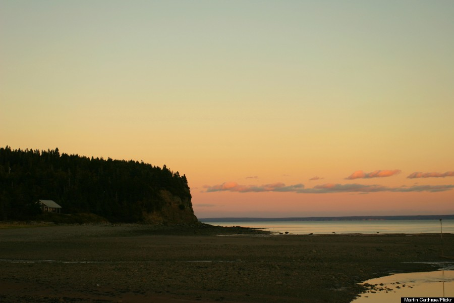 bay of fundy new brunswick